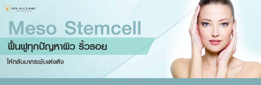 Meso Stemcell 3-1024x335